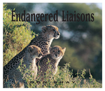 Endangered Liaisons – An African Odyssey