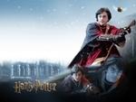 Quidditch Western Cup