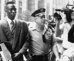 ~The Central Park Five Q&A~