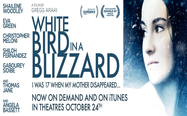 ~White Bird in a Blizzard~