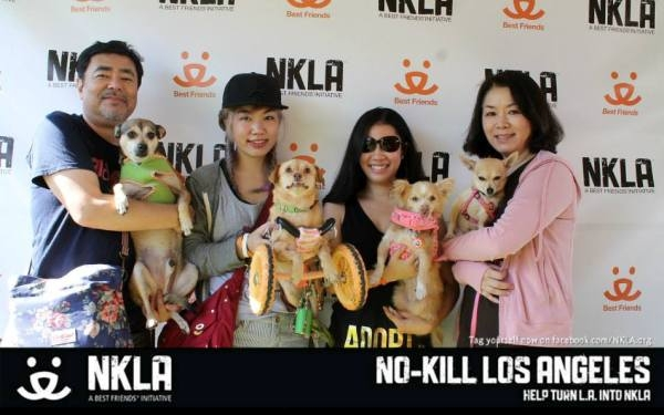 No Kill LA Pet Adoption Weekend