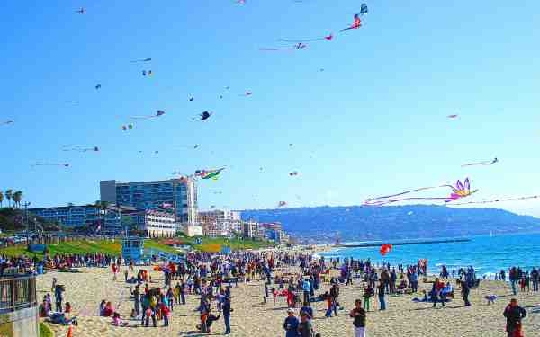 Festival of the Kite