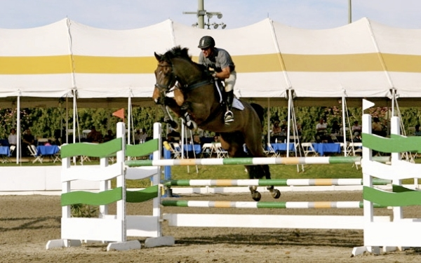 LA Season Finale Horse Show