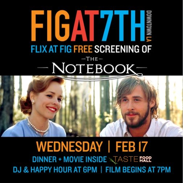 "FLIX at FIG ""The Notebook"""