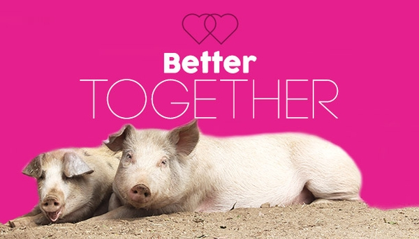 Better Together - Farm Sanctuary Valentine's Day Event
