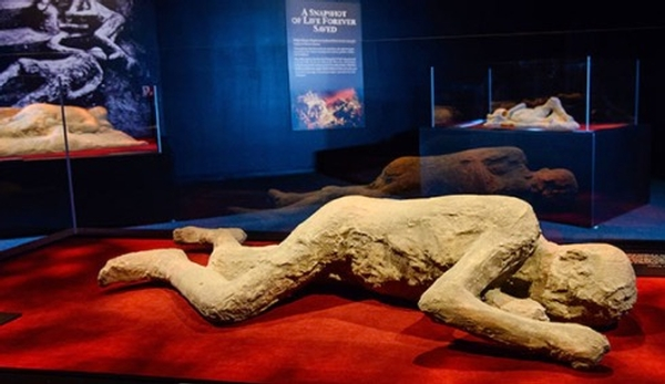 Pompeii The Exhibition