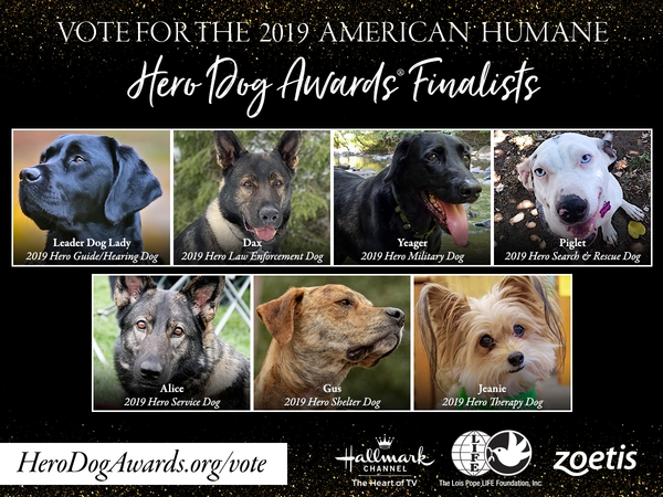 2019 American Humane Hero Dog Awards