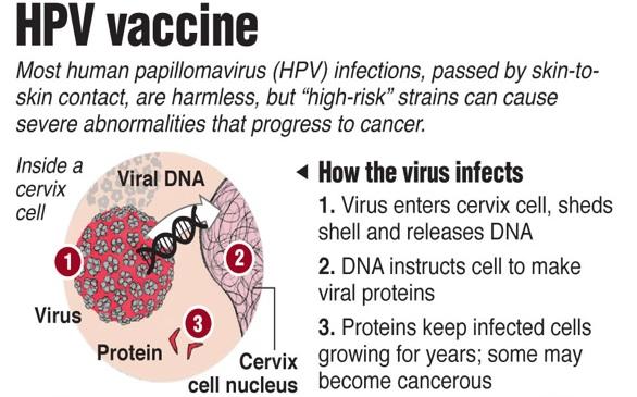 Vaccin papillomavirus nouveau - Human papillomavirus hpv cdc