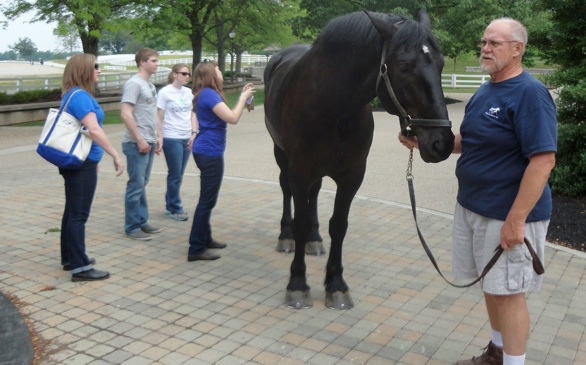 News, Tips & Trips: Kentucky Horses, the Loneliest Road, & the California Cruise-In