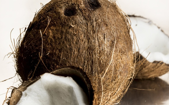 11 Reasons Why Coconut Oil Will Be Your New Best Friend this Summer