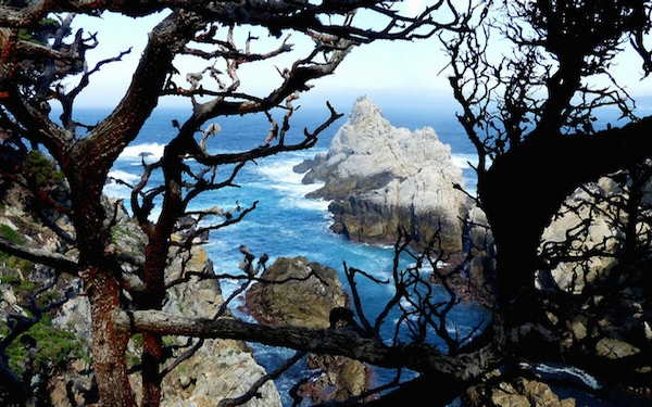 California's Point Lobos is some of Earth's prettiest coastline