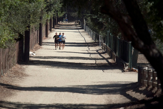 Better than social distancing? In this game you take a virtual walk in Griffith Park
