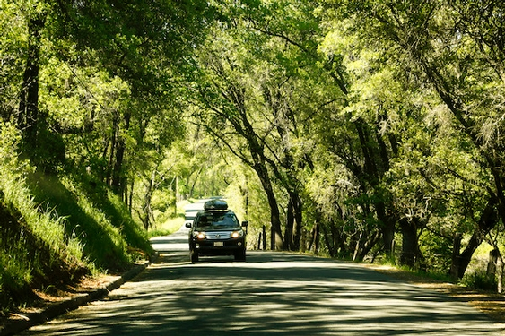Fall road trips: 10 tips for planning the perfect car-based getaway