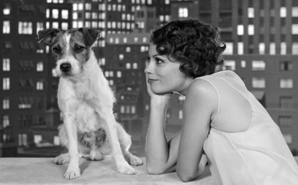 <i>The Artist</i>'s Uggie to retire at 10