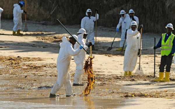 Volunteers will be trained to help with oil spill