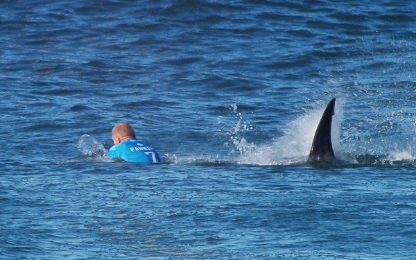Surfer Mick Fanning fends off shark during South Africa competition