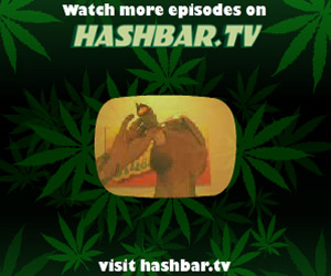 Hashbar.tv w/ Sean Kush