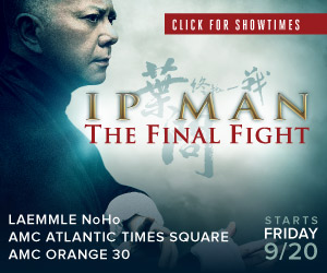 Ip Man: The Final Fight (Well Go USA)
